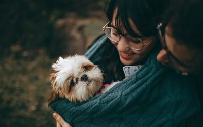 What Does Your Pet Mean To You?